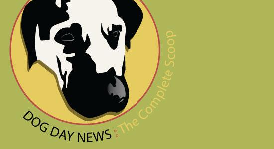 Logo Design Mockup by Gary Crossey