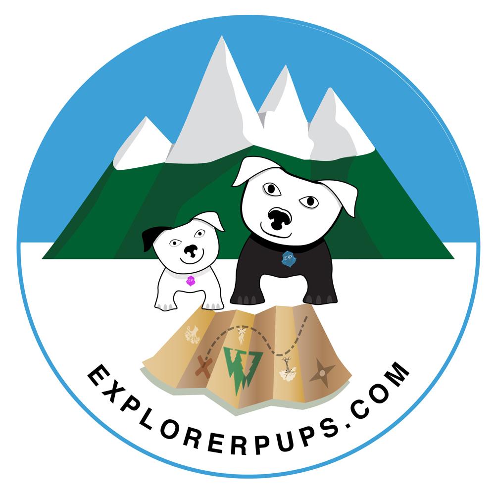 Branding - Logo Design